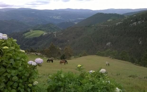 Escapada Rural en Asturias para 2 o Familias