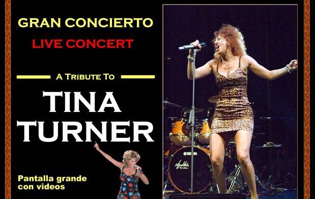 Tina Turner Tribute en concierto