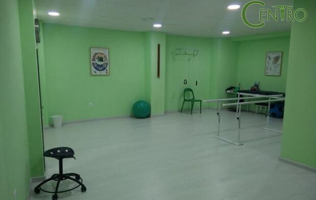 1 o 3 sesiones de fisioterapia de 1 hora