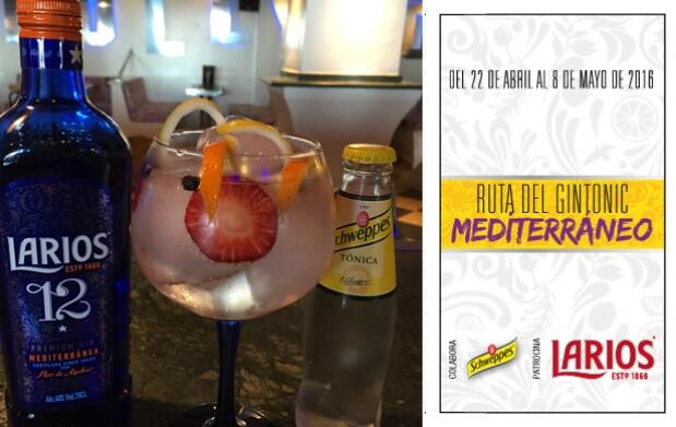 2 Gin-Tonics en Hollywood Café