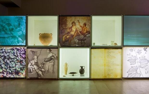 Entrada a Bodega + Museos del Dios Baco