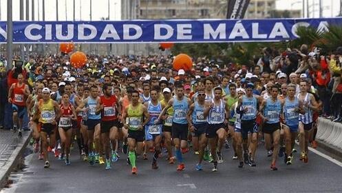 Dorsal para la Media Maratón 2018