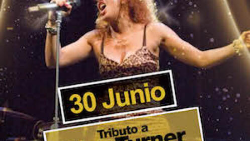 Entrada para el concierto tributo a Tina Turner